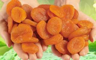 Чем отличается абрикос от урюка?