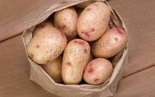 Картофель Синеглазка — описание сорта, фото, отзывы, посадка и уход