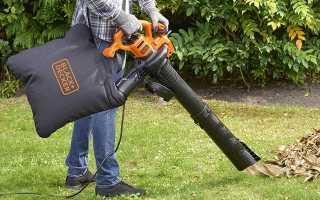 Топ-10 лучших садовых пылесосов – рейтинг 2021 г