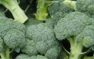 Почему не завязывается капуста брокколи — что делать?