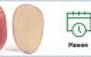 Картофель Торнадо — описание сорта, фото, отзывы, посадка и уход