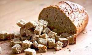 Подкормка огурцов йодом и хлебом