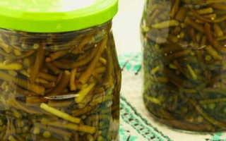 Маринованные побеги чеснока – 7 рецептов зимних палочек с пошаговыми фото