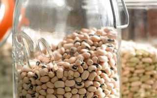 Как сохранить семена фасоли для посадки на следующий год?