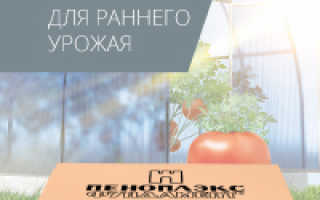 11 лучших Лянов Линни в Луку, Перголас и Перголас
