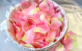 Польза свежих и сушеных лепестков роз: что делать, как готовить