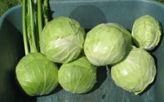 Хранение овощей зимой: 14 важных хитростей