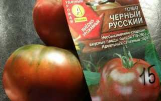 Сорта черных томатов с описанием