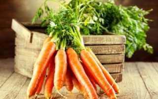 Как правильно убрать морковь на хранение?