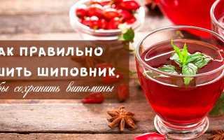Как сушить плоды шиповника в домашних условиях в духовке и без