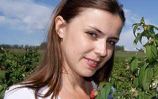 Укрытие винограда осенью для начинающих