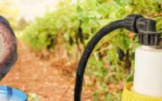 Коллоидная сера для винограда — инструкция по применению