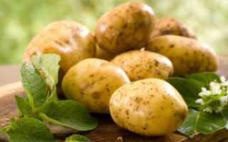 Чем удобрять картофель?