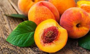 Как вырастить персик?