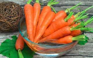 Как сохранить урожай моркови в домашних условиях?