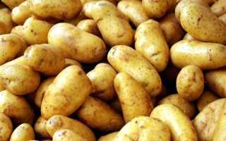 Картофель Фермер: описание сорта с характеристиками и отзывами