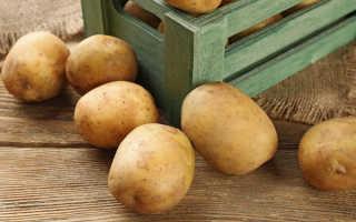 Как сохранить картошку без погреба?