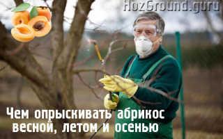 Обработка абрикоса весной