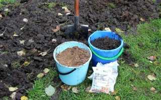 Какие удобрения для картофеля вносить осенью?