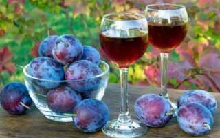Сливовое вино дома: 6 простые рецепты сливы