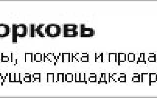 Урожайность моркови с 1 га в России