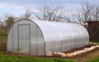 Подготовка земли в теплице для огурцов
