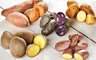 Чем отличаются столовые сорта картофеля от универсальных?