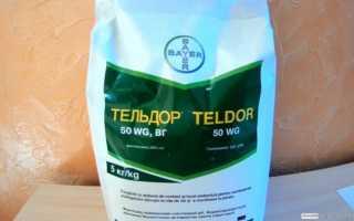 Фунгицид «Тельдор» инструкция по применению, отзывы, цена, совместимость, аналоги, нормы расхода для растений, как разводить