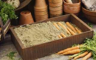 Как хранить зимой морковь в песке?