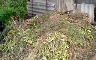 Чем обработать почву после уборки урожая картофеля осенью?