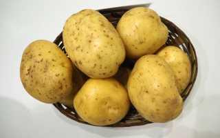 Картофель сорта Лилея: описание и характеристика белорусского сорта, вкусовые качества