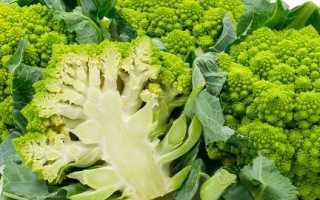 Капуста романеско – польза и вред, как приготовить, рецепты, выращивание