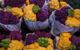 Когда убирают цветную капусту и как хранить?