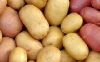 Как сохранить картофель на семена?