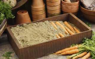 Можно ли хранить морковь в опилках?