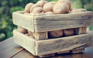 Можно ли мыть картофель перед закладкой на хранение в погреб?