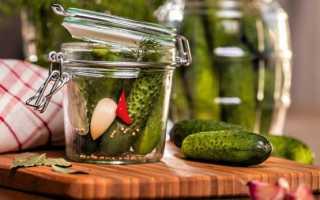 Аспирин для огурцов — способы применения