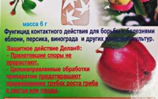 Фунгицид Делан: инструкция по применению для яблок, персиков, винограда, как разводить препарат, как и когда опрыскивать, отзывы