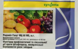 Фунгицид Ридомил Голд — инструкция по применению для винограда
