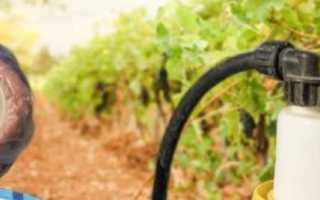 Баковые смеси для винограда
