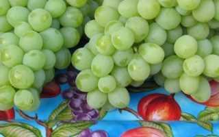 Виноград Валек: описание сорта, фото и отзывы садоводов