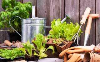 Выгодные дни для садовника и овощей в мае 2021 года: календарь, что посадить