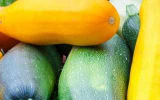 Чем подкормить кабачки во время цветения и плодоношения?