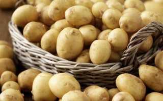 Лучшие скороспелые сорта картофеля