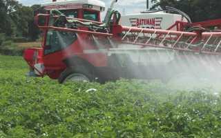 Гербициды для картофеля — виды и применение