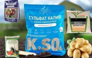 Удобрения для картофеля — виды и применение