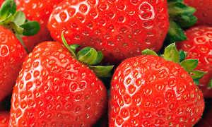 Земляника Вкуснятина: выращивание, описание сорта, фото и отзывы